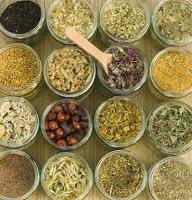 Pengobatan Alternatif Herbal
