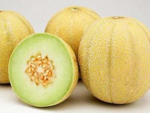 Manfaat Buah Melon Yang Sangat Baik Bagi Tubuh